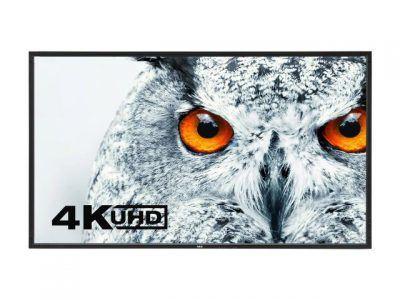 DisplayViewFrontBlack-Owl